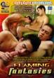 Flaming Fantasies DVD - Front