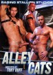 Alley Cats DVD - Front