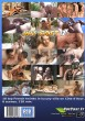 Hot Cast 3 DVD - Back