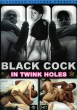 Black Cock in Twink Holes DVD - Front
