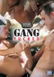 Gang Fucked (Stud Fuckerz) DVD - Front