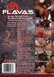 31 Flavas DVD - Back
