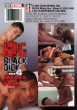 Big Black Dick Vol. 4 Inches of Pain DVD - Back