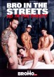 Bro In The Streets, Ho In The Sheets DVD - Front