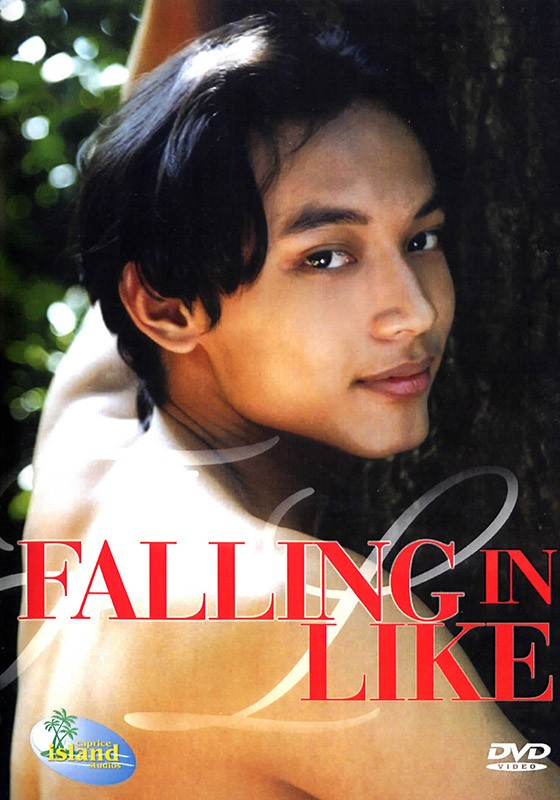 Falling in Like DVD - Front