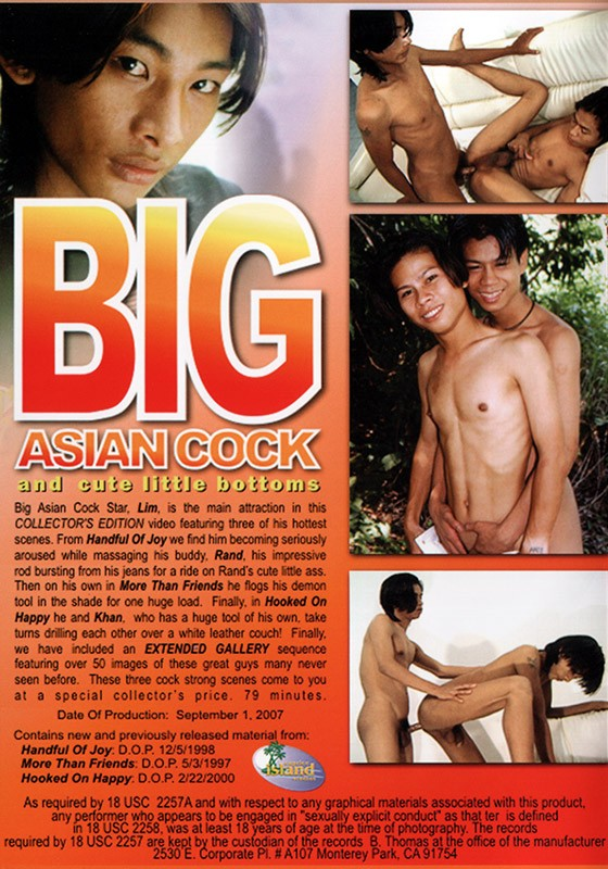 Big Asian Cock DVD - Back