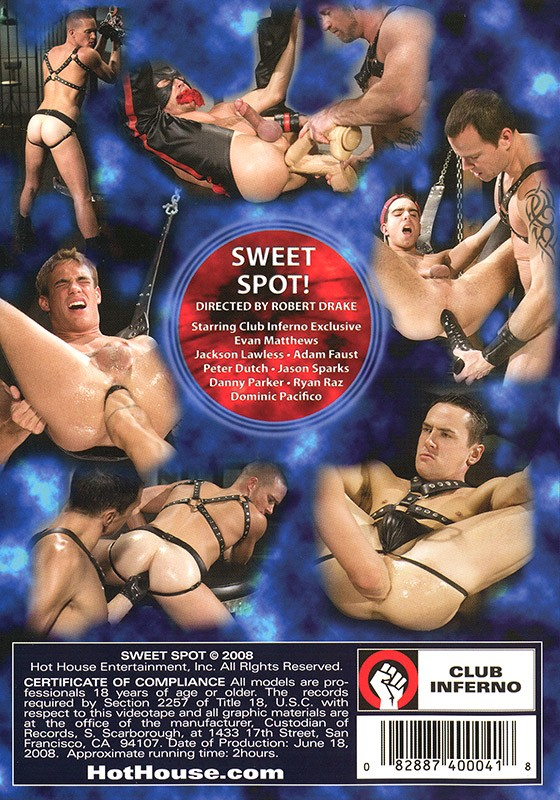 Sweet Spot! DVD - Back
