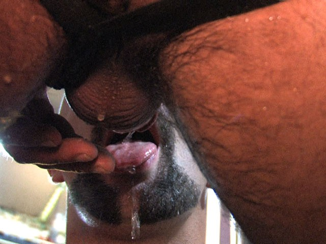 Cum Hungry Piss Whores DVD - Gallery - 039