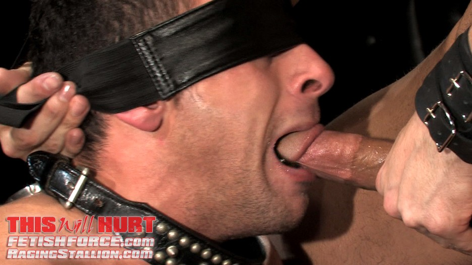 This Will Hurt DVD - Gallery - 008