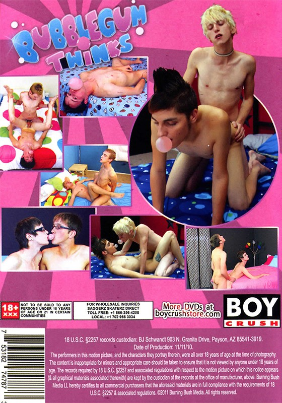 Bubblegum Twinks DVD - Back