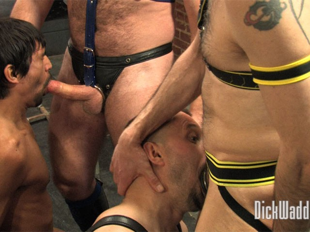 Breeding Sessions #1 DVD - Gallery - 001