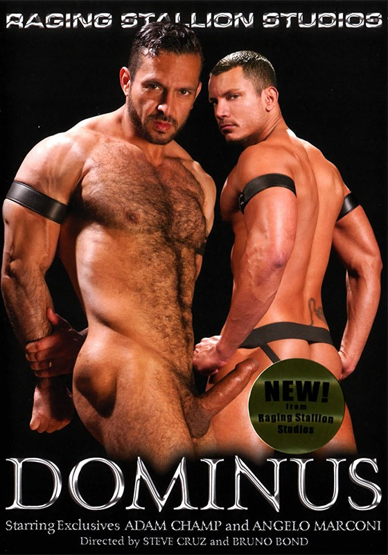 Dominus DVD - Front