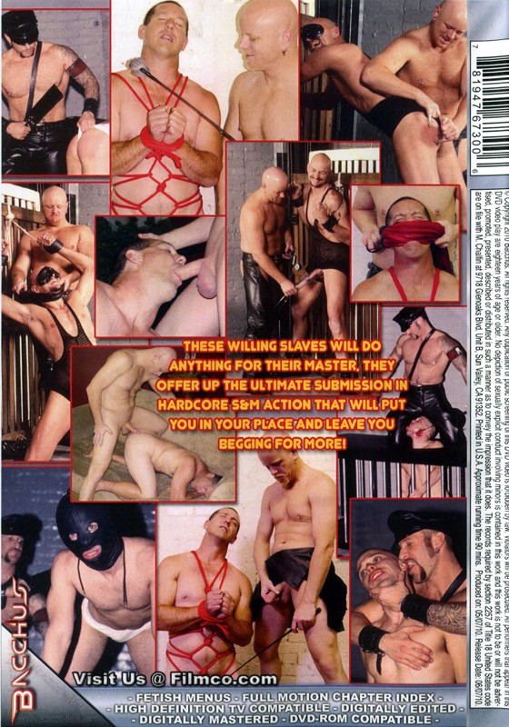 Master & His Slaves 2 DVD - Back