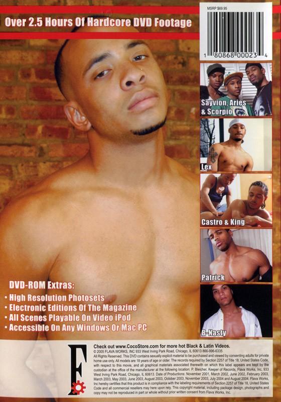 FlavaMen Freshman  Year - Issues 1 & 2 DVD - Back