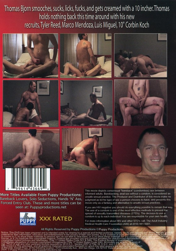 Bareback Auditions 3 DVD - Back