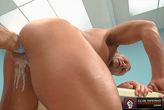 Holistic DVD - Gallery - 002