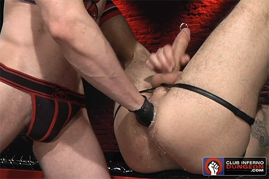 Alpine Wood Part 2 DVD - Gallery - 005