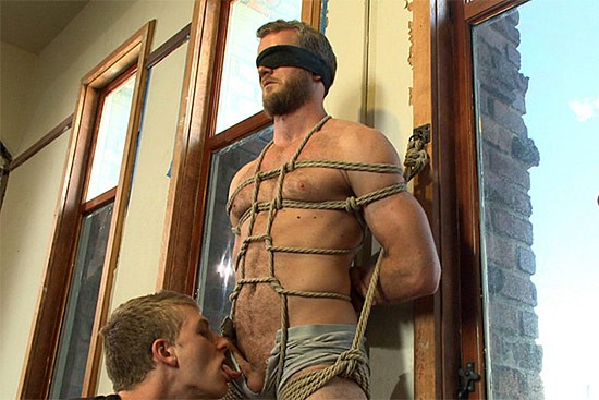 Bound Gods 50 DVD (S) - Gallery - 003