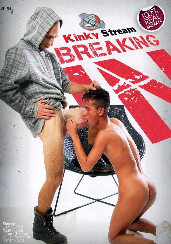 Breaking In DVD - Front