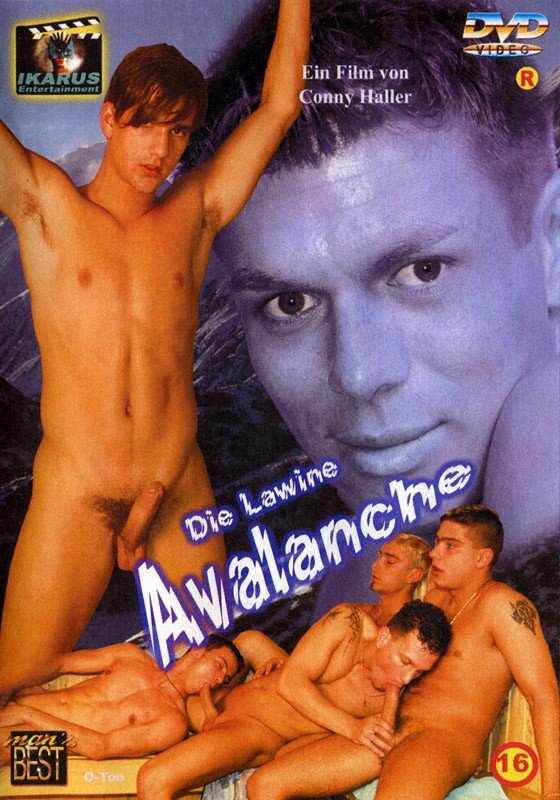 Die Lawine Avalanche DVD - Front