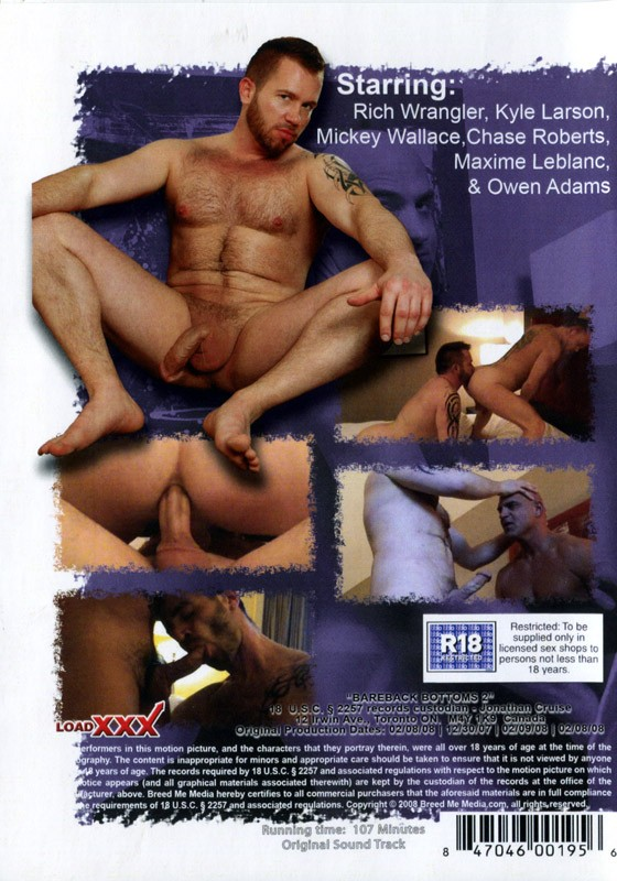 Bareback Bottoms 2 DVD - Back