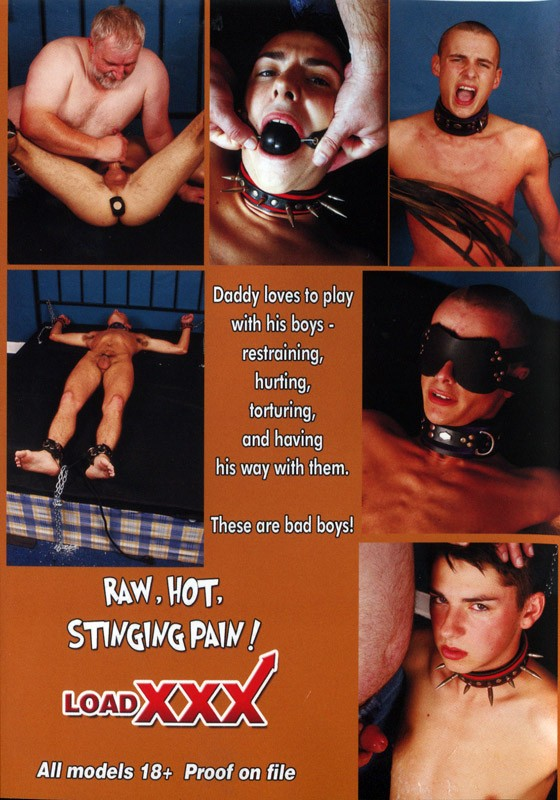 Daddy Darby's Twinks In Pain DVD - Back