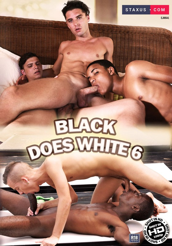 Black Does White 6 DVD - Front
