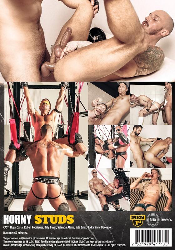Horny Studs DVD - Back