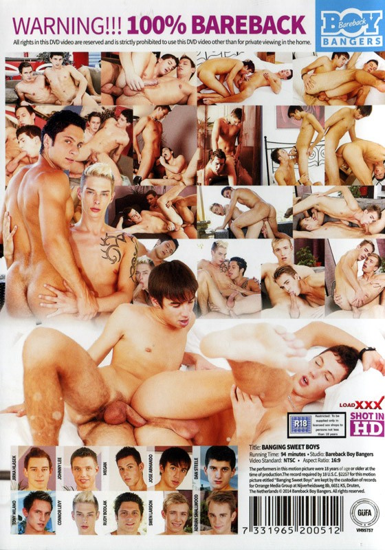 Banging Sweet Boys DVD - Back