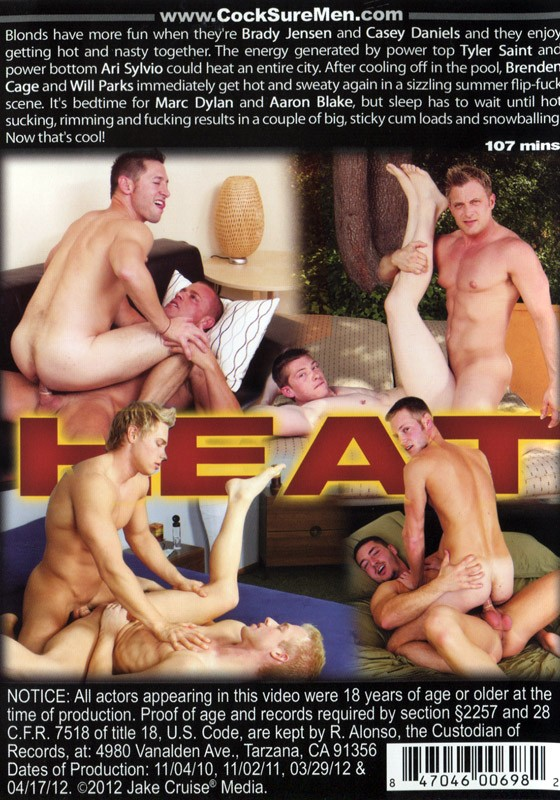 Heat (Cocksure) DVD - Back