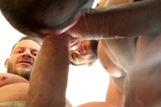 Hacked DVD - Gallery - 003