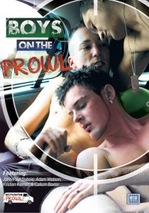 Boys On The Prowl DVD