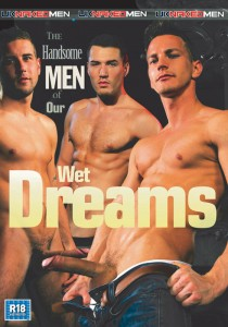The Handsome Men Of Our Wet Dreams DVD