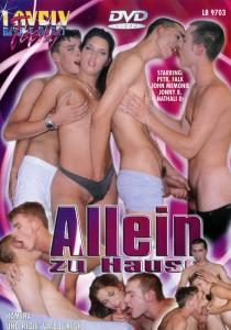 Allein Zu Hause DVD