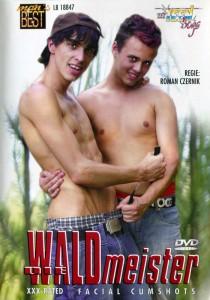 Die Waldmeister DVD (NC)