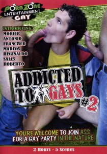Addicted to Gays Vol. 2 DVD
