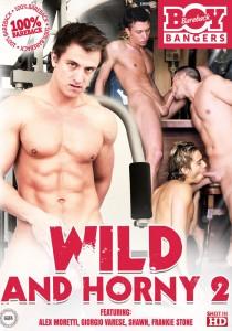 Wild & Horny 2 DVD