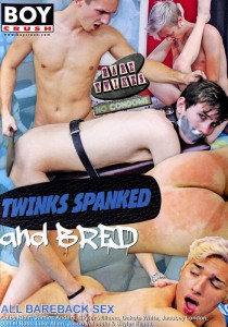 Twinks Spanked & Bred DVD (NC)