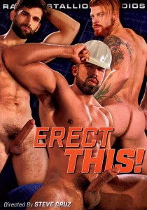 Erect This! DVD (S)