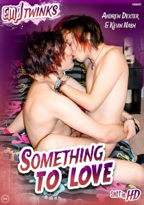 Something To Love DVD