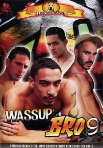 Wassup' Bro 9 DVD